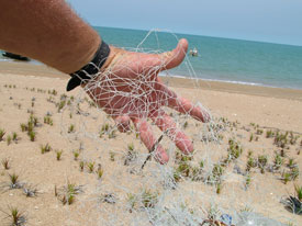 These nets are death traps from the moment they're thrown overboard and discarded.