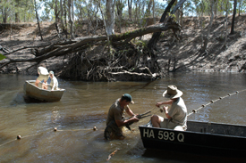 Freshwater Crocodile Research
