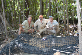 Saltwater Crocodile Research